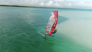 INtuition with Amado Foiling