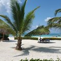 Zanzibar – powiew tropików